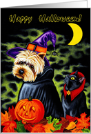 Halloween - Dog Witch Black Cat card