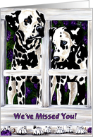 Welcome Home from Pet - Dalmatian Dogs Flowers card