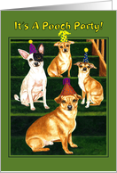Dog Birthday Party Invitation - Chihuahua Puppies card