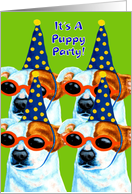 Dog Birthday Party Invitation - Jack Russell Terrier Puppies card