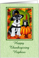 Happy Thanksgiving Nephew - Pilgrim Dog Indian Cat card