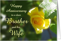 Happy Anniversary Brother and his Wife - Yellow Rose Flowers card