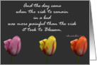 12 Step Recovery Encouragement Tulips Anais Nin Quote card
