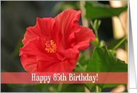 Red Floral 85th Birthday Card