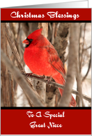 Great Niece Male Cardinal Christmas Card