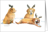 Goldens with Antlers card