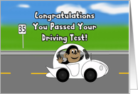 Congratulations You Passed Your Driving Test! - monkey,car ,speed limit card