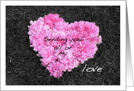sending you all of my LOVE pink heart made of peony flower petals card