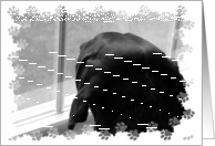 missing you dog looking out window card