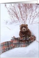 Winterscape Teddy Bear card