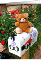Letter box teddy bear card