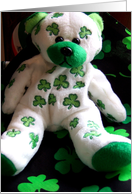 Shamrock Teddy Bear card