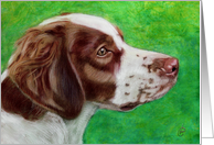 Brittany Spaniel Dog Painting card