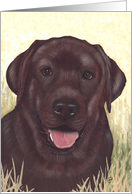 Labrador Retriever Painting card