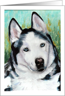 Siberian Husky Announcement Invitation card