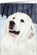 Great Pyrenees Mountain Dog Announcement Invitation card
