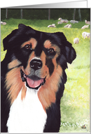 Australian Shepherd Dog Announcement Invitation card