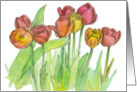 Happy Birthday Tulip Fine Art Watercolor Painting card