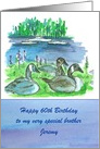 Happy 60th Birthday Brother Canada Geese Lake Boats Custom card