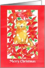 Merry Christmas Cat Red Poinsettia Flowers card