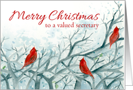 Merry Christmas Valued Secretary Cardinal Birds Winter Trees Watercolor card