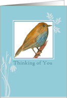 Thinking of You Bluebird Watercolor Painting card