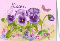 Happy Birthday Sister Butterfly Purple Pansy card