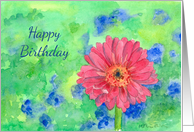 Happy Birthday Pink Gerbera Daisy Watercolor Painting card
