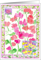 Pink Sweet Pea Flower Garden Watercolor Spring Flowers card
