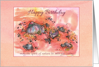 Birthday Pink Coral Shells Lace Sandy Beach card