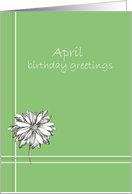 Happy April Birthday Greetings White Daisy Drawing card