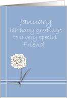 Happy January Birthday Friend White Carnation Flower Drawing card