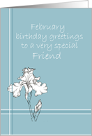 Happy February Birthday Friend White Iris Flower Drawing card
