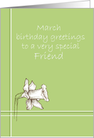 Happy March Birthday Friend White Daffodil Flower Drawing card