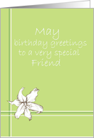 Happy May Birthday Friend White Lily Flower Drawing card