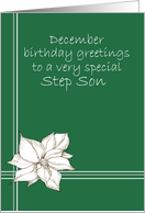 Happy December Birthday Step Son Poinsettia Flower Drawing card