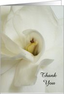 White Gardenia Sympathy Thank You Card