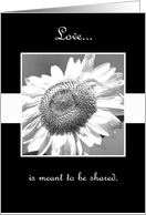 Black and White Mammoth Sunflower Renewing Vows Invitation card