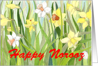 Daffodil Fields Norooz card