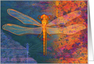 Birthday Dragonfly card