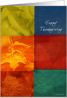 Fall Colors - Thanksgiving Card