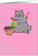 Knitting Cat Happy Birthday Humor card