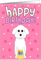 Happy Birthday - Bichon Frise card