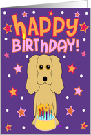 Happy Birthday - Cocker Spaniel card