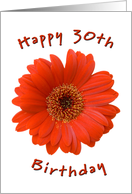 orange gerbera - happy 30th birthday card
