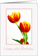 Red and yellow tulips - Happy 46th Birthday card