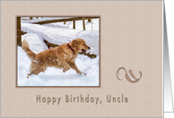 Birthday, Uncle, Golden Retriever Dog in Snow card