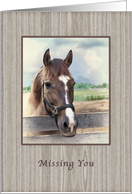 Missing You, Brown Horse with Bridle card
