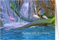 Birthday, 70th, Tropical Waterfall, Flamingos and Ibises card