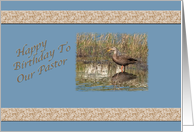 Pastor's Birthday Card with Mottled Duck card